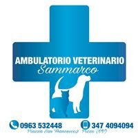 Ambulatorio Veterinario Sammarco