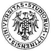 Scuola di Specializzazione in Beni storico-artistici di Udine