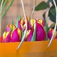 LA PICCOLA SELVA floral designer