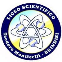 "Liceo Scientifico ""T. Monticelli"" Brindisi"