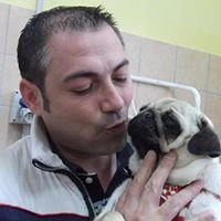 Vanity Pets Toelette Cani e Gatti