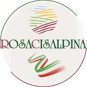 Rosacisalpina