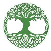 Oak Ancestry