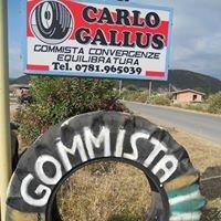 Gommista Carlo Gallus
