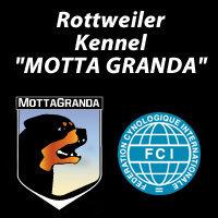 """Allevamento Rottweiler """"Motta Granda"""""""