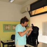 Ambulatorio Veterinario Dott. Marco Catellani