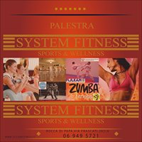 System Fitness Sports & Wellness
