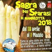 Sagra Degli Asparagi Di Mambrotta (VR)