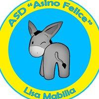 SIFE - Asino Felice - Scuola Italiana Formazione Equidi ASD APS