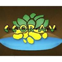 Ccorav - Consorzio Cooperativo Ortofrutticolo Alto Viterbese