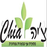 צ'יה - ביסטרו קפה צמחוני וטבעוני