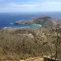 Top Of Koko Head Trail