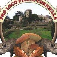 ProLoco Piloni - Torniella
