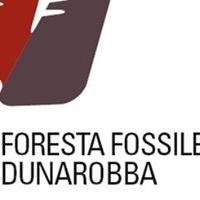Foresta Fossile di Dunarobba.