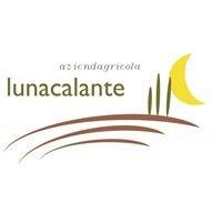 Lunacalante