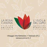 L'Isola del Lupo - Agriturismo Didattico Culturale a Montefreddo Tredozio