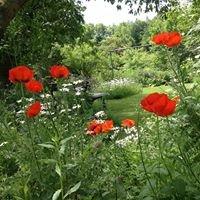 Naturgarten von Marie-Luise