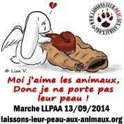 Association Laissons Leur Peau Aux Animaux - LLPAA