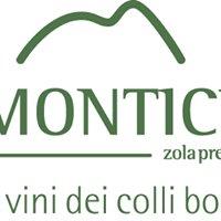 IL MONTICINO vigne e vini dei colli bolognesi