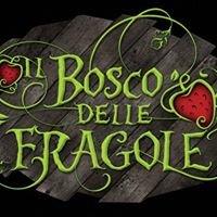 Il Bosco Delle Fragole, Any Given Monday