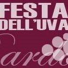 Amici della Festa dell'uva e del vino Bardolino