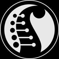 Serracini chitarre
