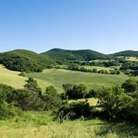 Tenuta Ricrio - Tuscany