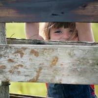 Elaine Ferguson Photography