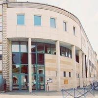 Lycée Louis Majorelle