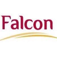 Falcon Incorporation Pte Ltd