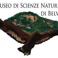 Museo di Scienze Naturali di Belvì