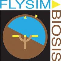FlySimbiosis