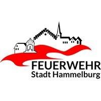 Feuerwehr Stadt Hammelburg