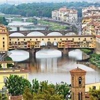 Downhill Travel / Italia Spesialist...