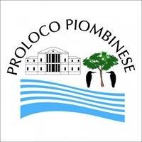 Proloco Piombinese - Piombino Dese, Pd