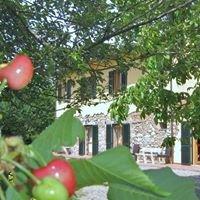 Agriturismo Il Gelso Pomaia Costa Etrusca Pisa Toscana