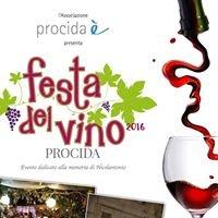 Festa del Vino - Procida