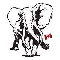 Elephant Services