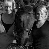 Seeberger Horse and Rider Therapy