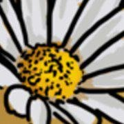 Hunsrücker Honig
