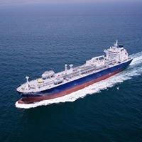 Thalatta Shipping and Marine Services Ltd.