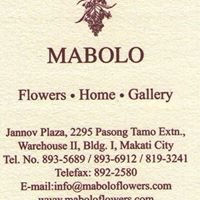 Mabolo Flowers and Home