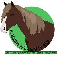 Il Mondo del Cavallo - Associazione Sportiva Dilettantistica