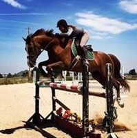 BC Equestrian