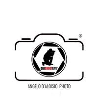 Oneshootlive - Angelo D'Aloisio Photo