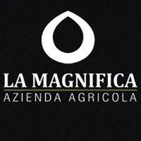 La Magnifica Breeding & Sporthorses