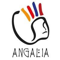 Angalia Onlus
