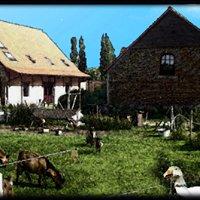 De Plukboerderij van Schelle,   b&b