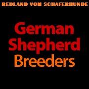 German Shepherd Breeders - Redland Vom Schaferhunde