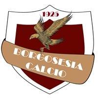 Borgosesia Calcio Asd